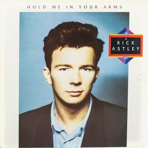 HOLD ME IN YOUR ARMS (DISCO VINILO)