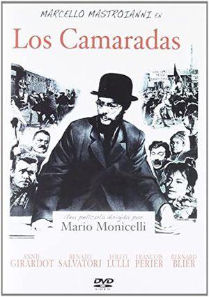 DVD LOS CAMARADAS