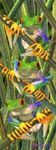 MARCAPAGINAS 3D TREE FROGS TRES RANAS