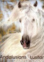 ANDALUSIANS & LUSITANOS. IBERIAN HORSES