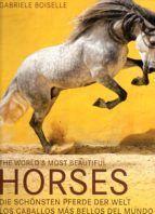 HORSES. LOS CABALLOS MAS BELLOS DEL MUNDO
