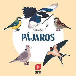 COLECCION NATURALEZA: PAJAROS