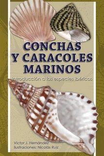 CUADERNOS DE NATURALEZA,18 CONCHAS Y CARACOLES MARINOS