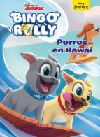 BINGO Y ROLLY. PERROS EN HAWAI