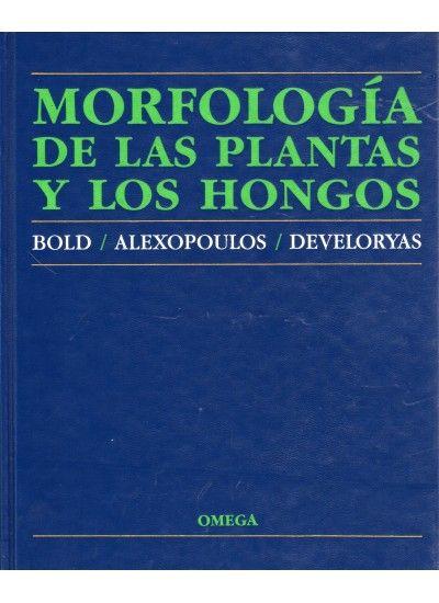 MORFOLOGIA DE LAS PLANTAS Y HONGOS