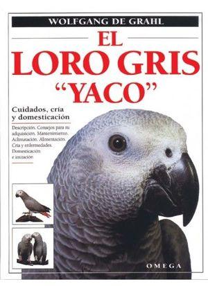 EL LORO GRIS 'YACO'