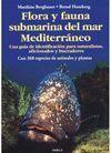 FLORA Y FAUNA SUBMARINA MAR MEDITERRANEO