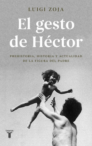 EL GESTO DE HECTOR