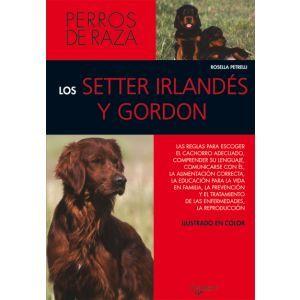 LOS SETTER IRLANDES Y GORDON