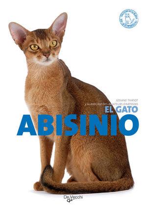 EL GATO ABISINIO