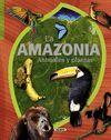 LA AMAZONIA ANIMALES Y PLANTAS