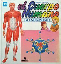 CUERPO HUMANO, EL - Nº 29