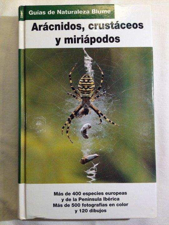ARAÑAS, ARÁCNIDOS Y MIRIÁPODOS