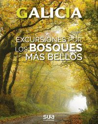 EXCURSIONES POR LOS BOSQUES MAS BELLOS. GALICIA