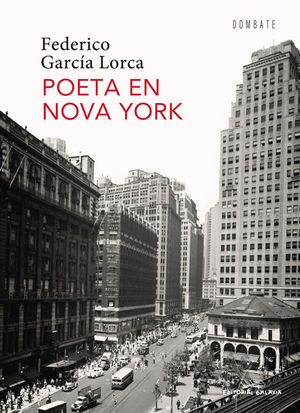 POETA EN NOVA YORK (GALEGO)
