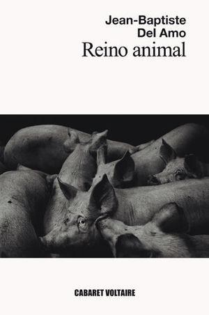 REINO ANIMAL