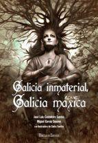 GALICIA INMATERIAL, GALICIA MÁXICA