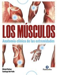 LOS MUSCULOS. ANATOMIA CLINICA DE LAS EXTREMIDADES