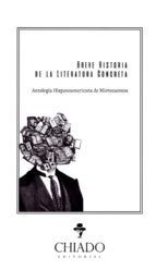BREVE HISTORIA DE LA LITERATURA CONCRETA